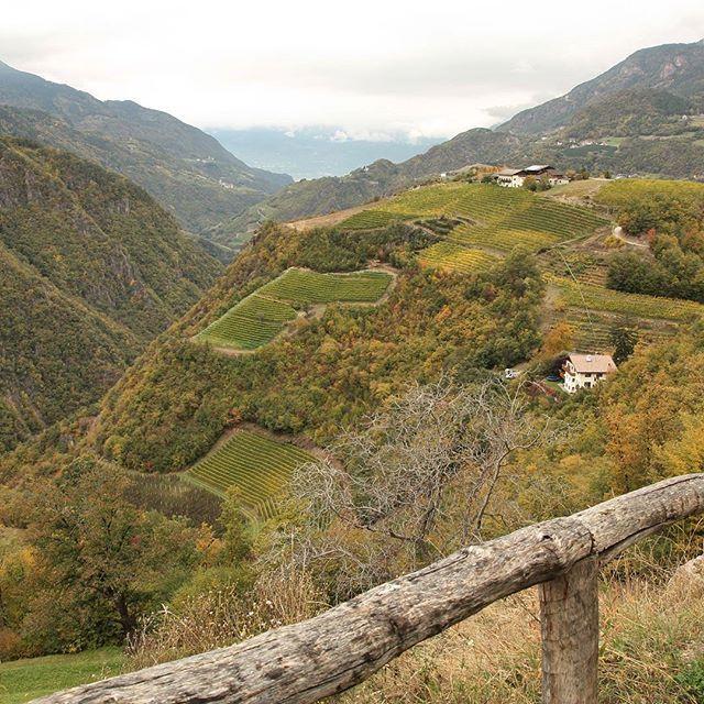 Auf dem Oachner Höfeweg zwischen Prösels und Tiers am Rosengarten ~~~~~~~~~~~~~~~~~~~~~~~~~~~~ #Südtirol #wandern #herbst #wein  #visitsouthtyrol #volgobolzano #autumndays #berge #italytour #italien #travelblog #optoutside #landscape #schönertag #outdoorblog #germanblogger #mountainview #italia #italy #spaziergang #draußen #natura #bauernhof #volgoitalia