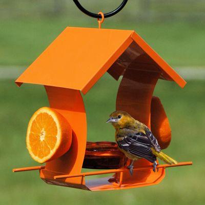 "WL35319 Metal House Oriole Feeder. Description: Orange Metal Oriole Feeder. Capacity 1 jelly dishes, 2 Orange halves. Dimensions: 7.25 D x 10.6"" W x 10"" H"