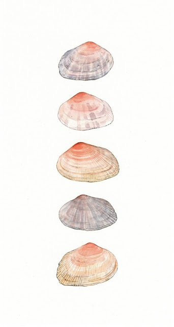 Charming watercolors by David Scheirer