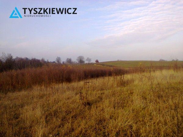 Działka budowlana w bardzo dobrej cenie, zlokalizowana w miejscowości Lisewiec. Nie jest objęta miejscowym planem zagospodarowania przestrzennego, są natomiast wydane warunki zabudowy. Działka nie jest uzbrojona , instalacja gazowa, energetyczna i wodno-kanalizacyjna w odległości ok 600 metrów od działki. #dzialka #lisewiec #natura #przestrzen CHCESZ WIEDZIEĆ WIĘCEJ? KLIKNIJ W ZDJĘCIE!