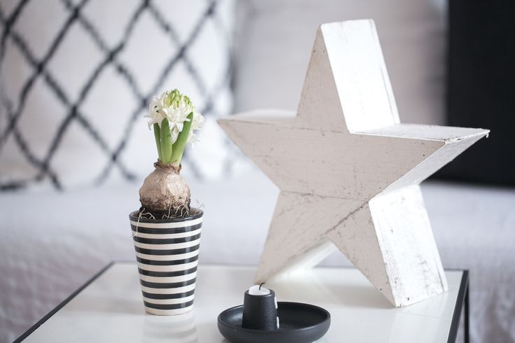 25 einzigartige hyazinthe ideen auf pinterest amaryllis. Black Bedroom Furniture Sets. Home Design Ideas