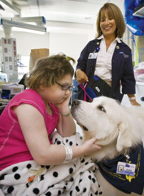 """Juravinski hospital in Ontario, Canada allows pets to visit their seriously ill humans. The hospital adopted a program called Zachary's Paws for Healing, launched by Donna Jenkins. She was inspired by her 25-year-old nephew, Zachary, who benefited greatly from having his dogs around him while he was battling Hodgkin's lymphoma. """"While Zachary was in the hospital for many weeks and very sick after having a stem cell transplant, he begged to see his dog, Chase,"""" Jenkins told Bored Panda. """"We…"""
