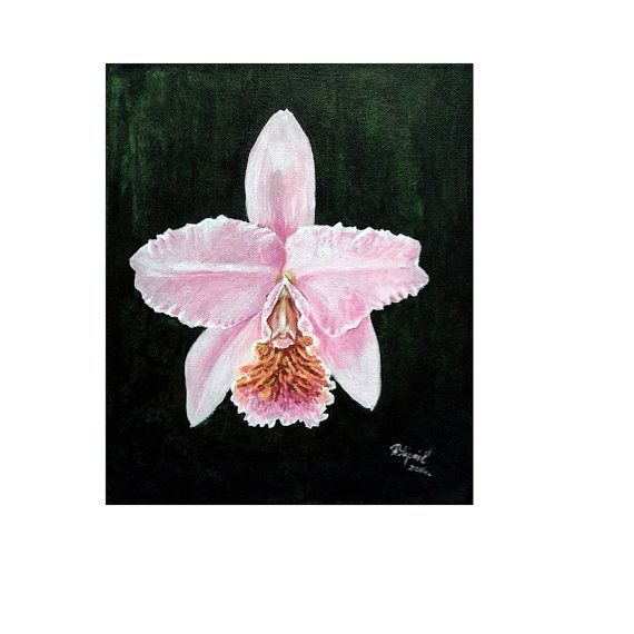 Original exotic tropical flower painting Cattleya by Pilipart, $52.00