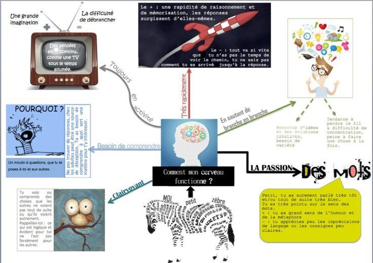 Vous avez dit HP ? Infographie du fonctionnement du cerveau des surdoués :) (cliquez pour agrandir)