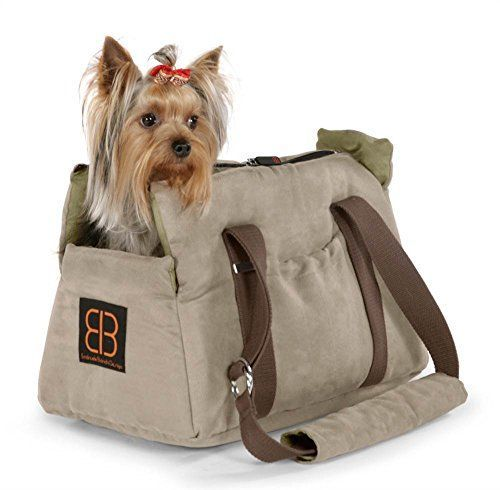 20 Best Pet Carrier Images On Pinterest Pet Carriers Doggies And Carry Bag