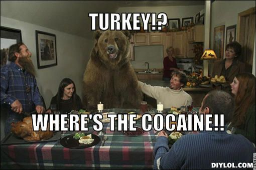 turkey meme | Cocaine Bear Meme Generator - DIY LOL