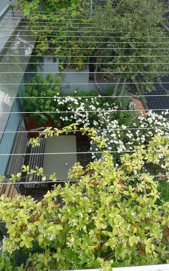 Balcony in milan cosmos bipinnatus cristina mazzucchelli terrazzi