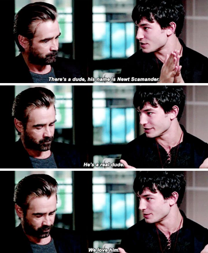 """""""He comes to New York. He's got a case full of other dudes... Who are magical creatures"""" -Ezra Miller"""