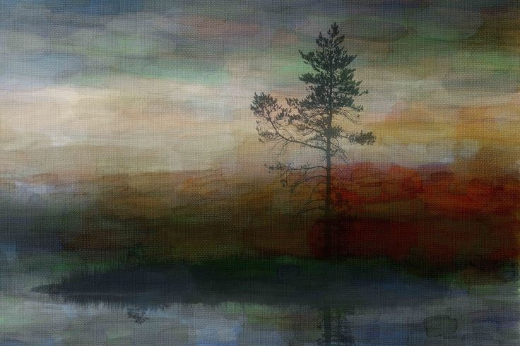 Lone Tree Graphic Art on Wrapped Canvas