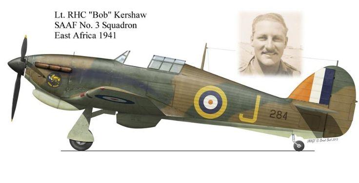 Hawker Hurricane MKIIb trop flown by Robert Harold Carlisle Kershaw  when he won his DSO. SAAF No. 3 SQ . Graphics by Brent Best.