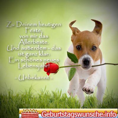 Geburtstagswunsche Fur Hunde Geburtstagsspruche Pinterest