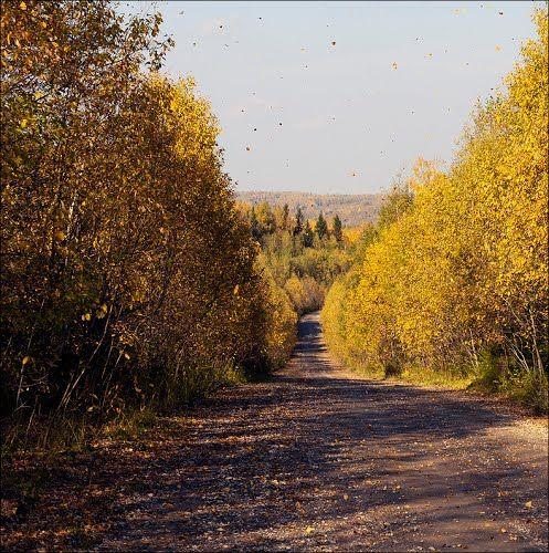 Panoramio - Photos by Andrey Fedoseev (Per@)