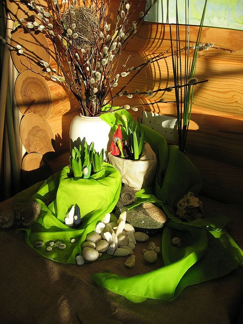 spring nature table - I love the idea of adding the spring bulb flowers to grow