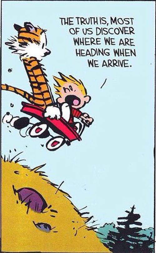 15 Times Calvin And Hobbes Spoke Nothing But The Truth About Life