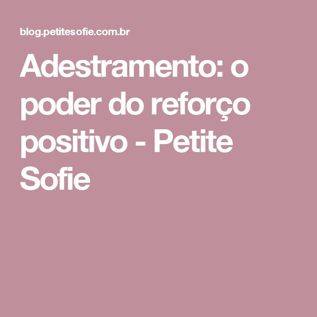 Adestramento: o poder do reforço positivo - Petite Sofie