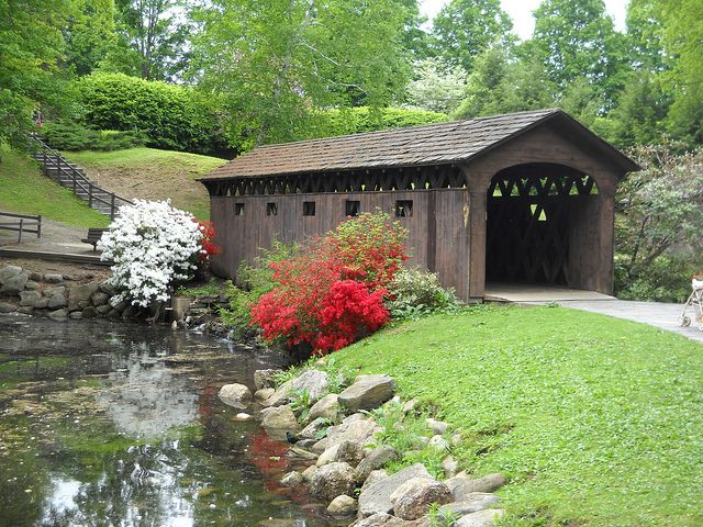 covered bridge in spring