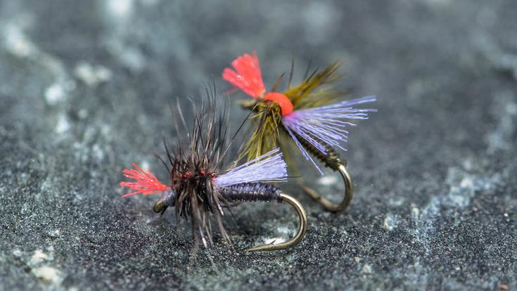 Midges – The Key to Unlocking Success – Part #2 of 3 | Wind River Outdoor Company Lander, Wyoming
