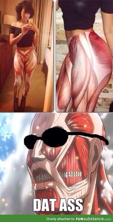Attack on Titan Humor