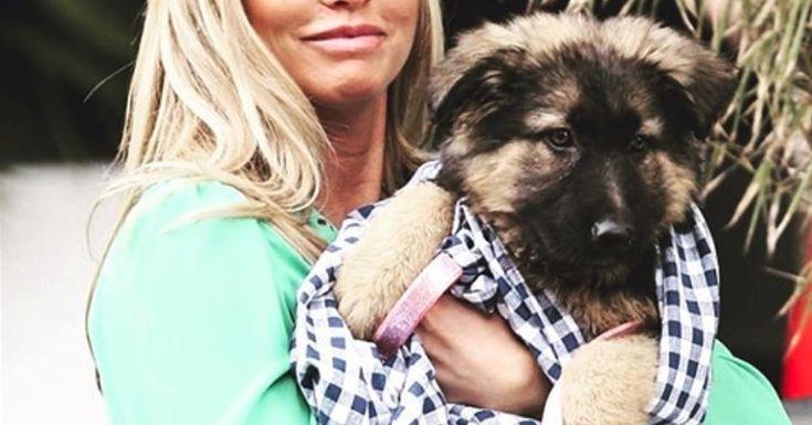 El devastador mensaje de Katie Price echando la culpa del fallecimiento de su perro a un trabajador de Domino's Pizza: #dep #rip #katieprice #perro #perros #dominospizza #animales #animal #mascota #mascotas #pastoraleman #noticia #noticias #pastoresalemanes #conductor #atropello