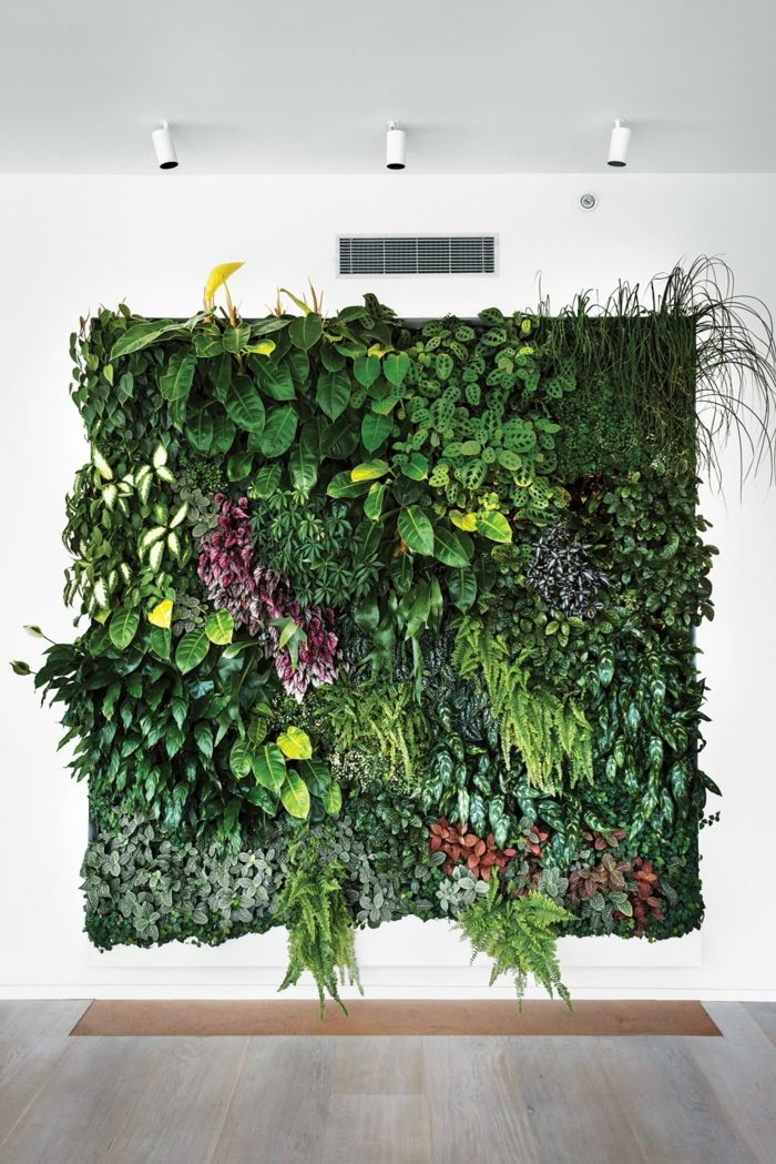 Grüne Wand: Die Kunst des Grüns für Außen- und Innenräume