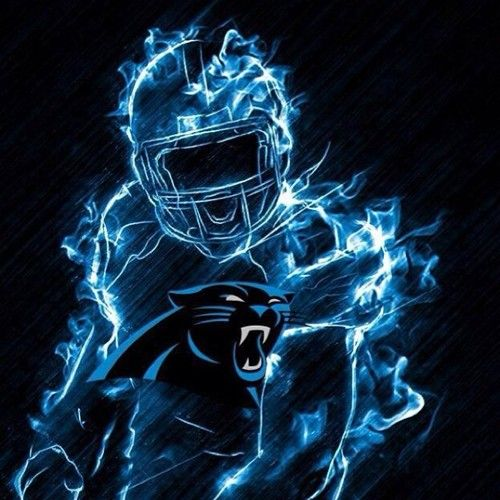 Best 25 Carolina Panthers Football Ideas On Pinterest