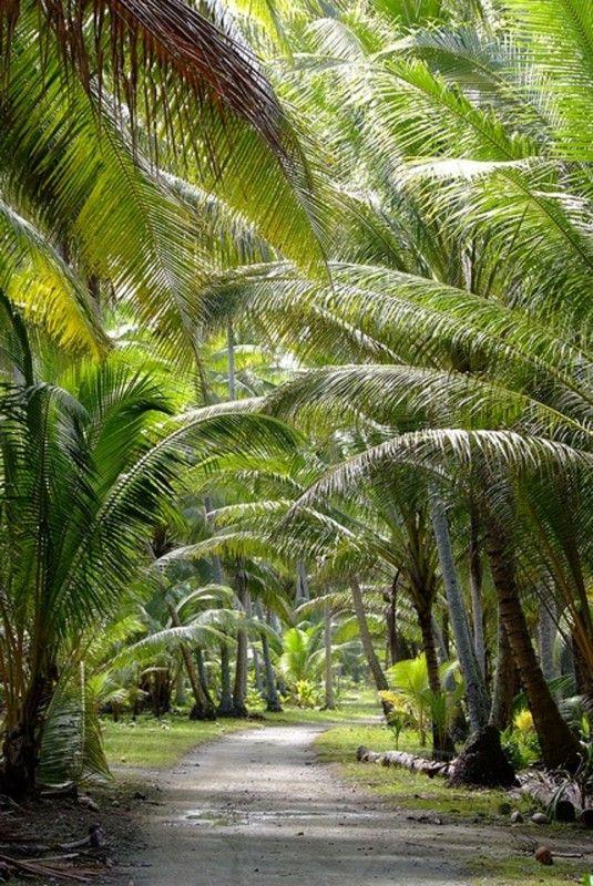 Tuvalu - 9 négyzet mérföld