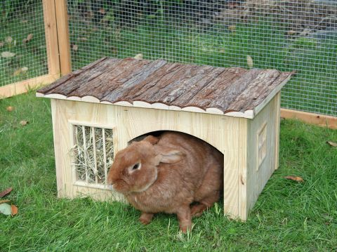 NATURE PLUS House With Hay Rack 54x41x30cm CanAgri