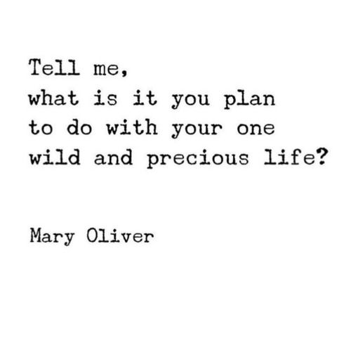 Tell me what is it you plan to do with your one #wild #precious...