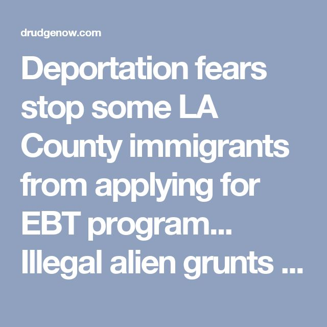 "Deportation fears stop some LA County immigrants from applying for EBT program... Illegal alien grunts leeching off American hard working taxpayers thanks to our elected ""officials""... Let them starve!"