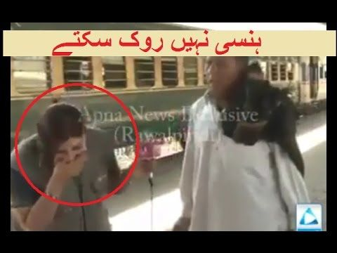 Most Funny News Report on Pakistani News Channel - Most Viral on Social ...
