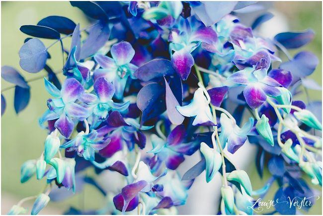Blue orchids Bridal Bouquet
