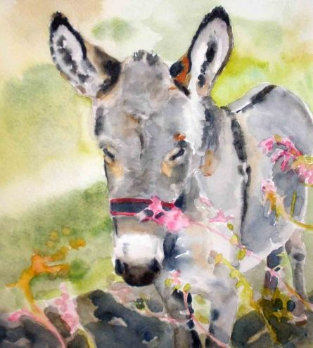 kay smith artist | Burro, original painting by artist Kay Smith | DailyPainters.com