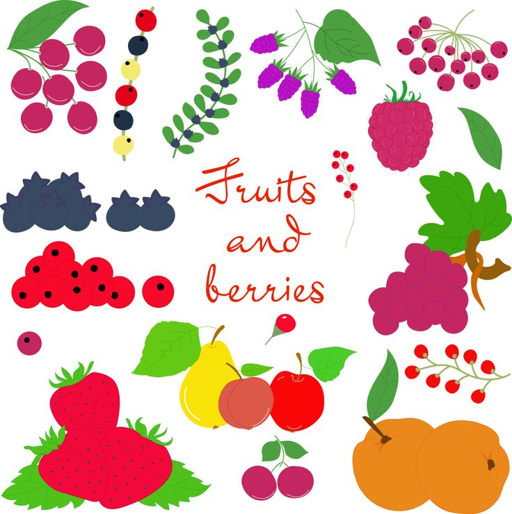Fruits and berries by Orangepencil on Etsy