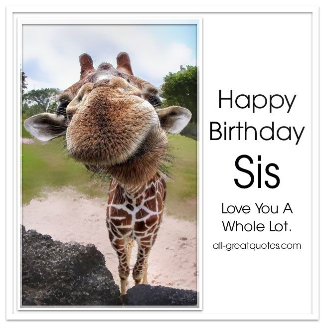460 best Birthday Wishes images – Free Birthday Card Wishes