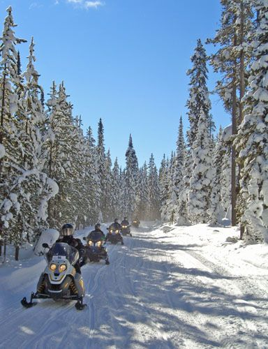 Pictures of Winter in Yellowstone -- The Park Has More Than Old Faithful : Snowmobiling on the trail system in West Yellowstone