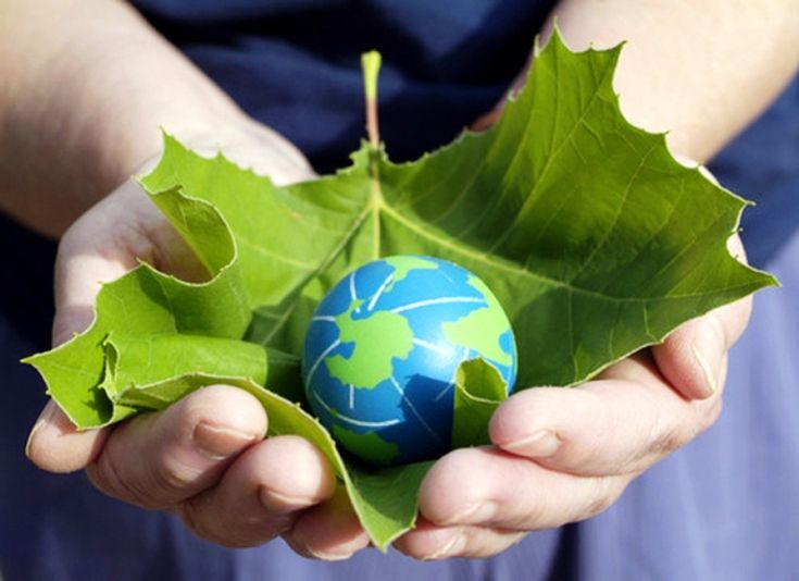 Image result for clean environment by scrap
