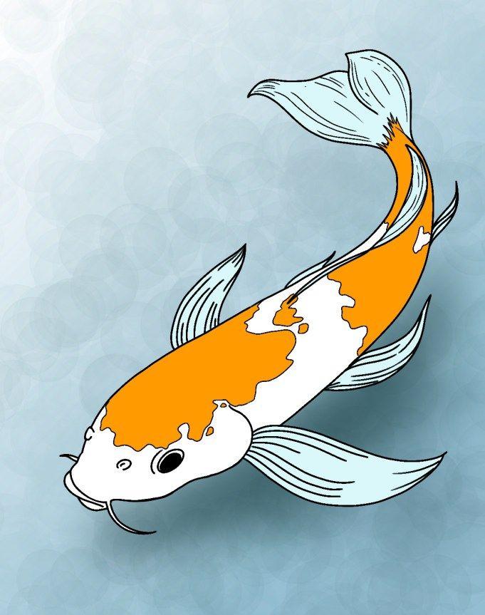 How To Draw Koi Fish Hudozhestvennye Kartiny Akvarelyu Linejnye Chertezhi Risunki