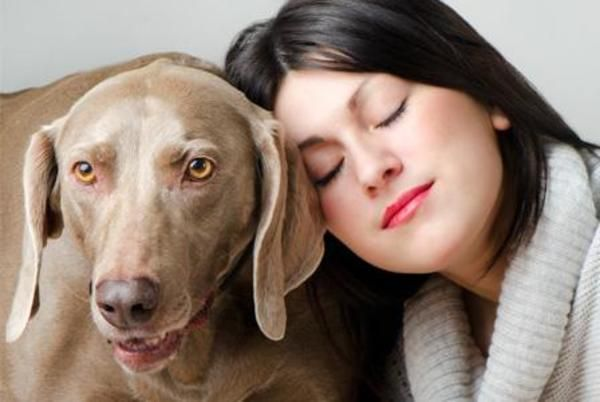 Have you ever wished that your pet could talk? Well, maybe he can. Animal communication is becoming increasingly popular, and animal communicators claim they can actually speak with animals. But is it a just a hoax?