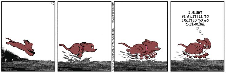 Dog Eat Doug by Brian Anderson for Jan 23, 2017 | Read Comic Strips at GoComics.com