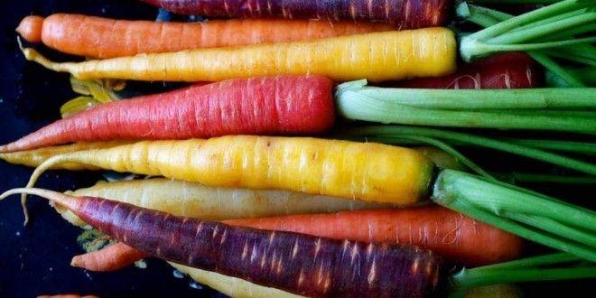 Carote: proprietà, benefici, rimedi naturali e controindicazioni. #carote #alimentazione #rimedinaturali #saluteebenessere