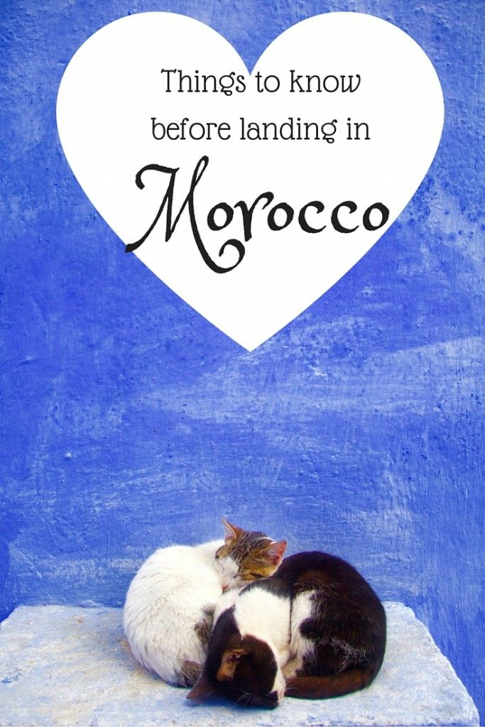 Going to Morocco soon? Read up!