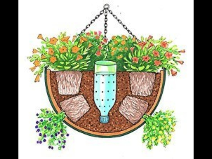 Water for Hanging Basket