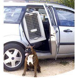 trasportino per cani Boxer