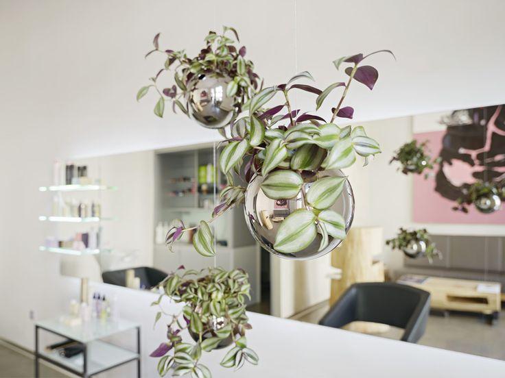 Články :: ŠTÝL :: Závěsné květináče Evervit řad Flying Orchids a Jungle