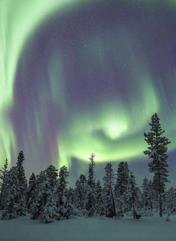 Beautiful Aurora Borealis in the Finnish Lapland