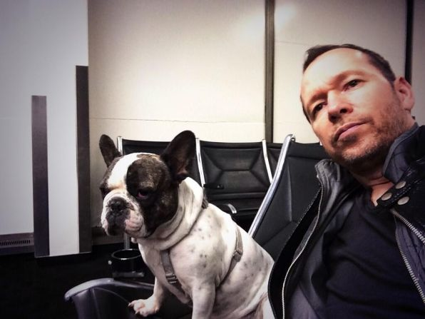 42 Celebrities and their pets