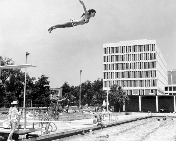 112 Best Florida Sports Images On Pinterest Florida 1950s And A Group