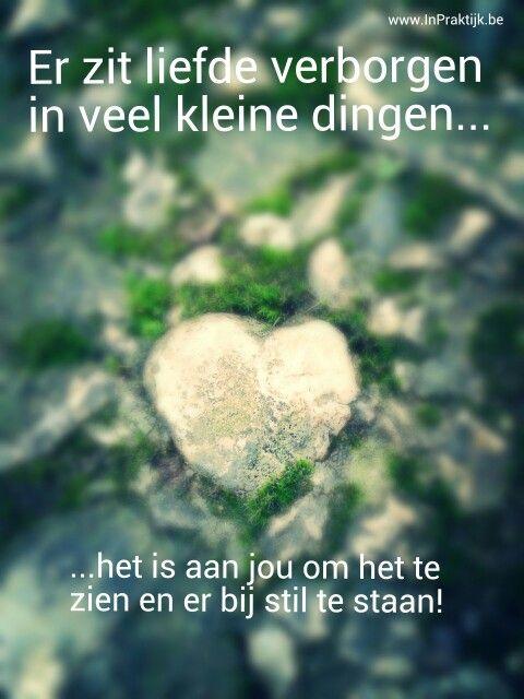 Goedemorgen! Er zit liefde verborgen in veel kleine dingen. Het is aan jou om het te zien en er bij stil te staan!