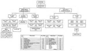 Human Resource Organizational Chart & HR Organizational Chart