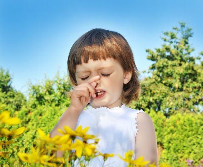 Alergia la polen